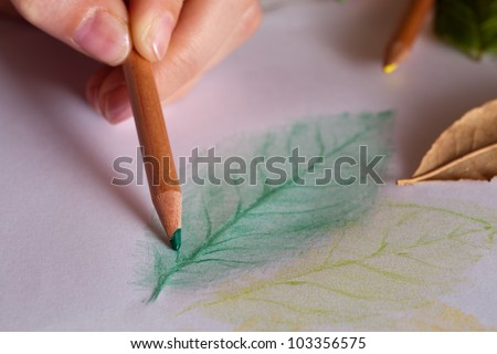 Drawing leaves with frottage technique - stock photo
