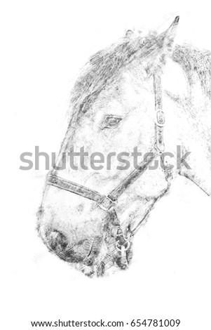Drawing of a horse against a wooden background