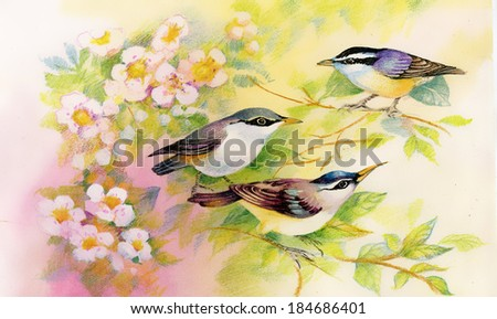 Drawing of beautiful bright birds on branch