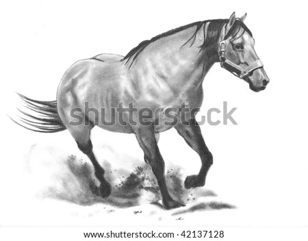Drawing of Running Horse, Realism