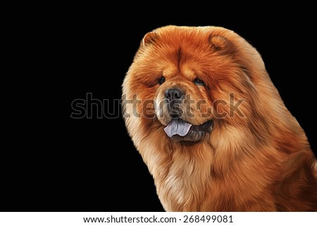Drawing of the dog chow chow, red, portrait on a black background