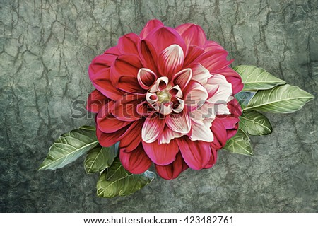 Drawing oil painting dahlia flower on old vintage color grunge paper background