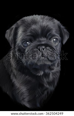 Drawing Puppy pug portrait on a black background