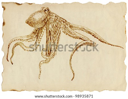 Drawing (uncompromising) octopus on the old paper - stock photo