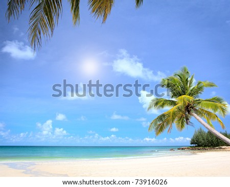 Dream beach with palm trees and white sand. Luxury vacations in summer nature. - stock photo