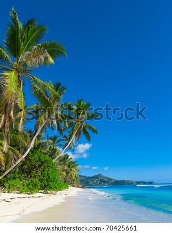 Dream Palms Shore