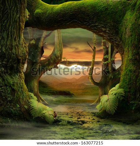 dreamily forest - stock photo