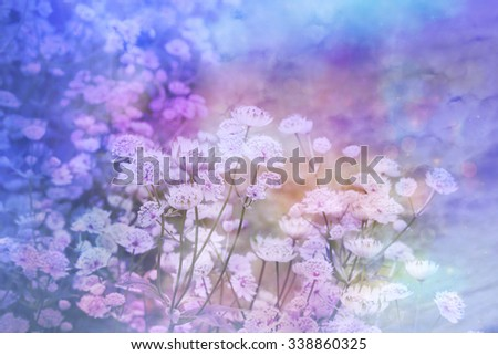 Dreamy beautiful floral background with bokeh lights - stock photo