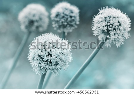 Dreamy floral background in vintage color - stock photo