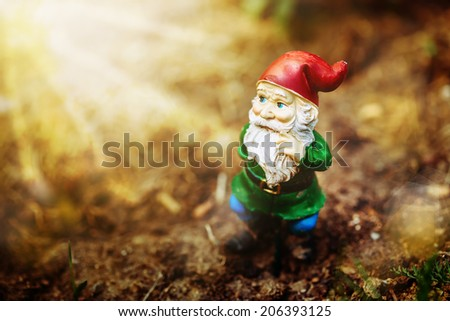 Dreamy garden dwarf in sun light - stock photo