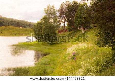 Dreamy landscape in Sweden. Texture conceptual image. texture add to the image. - stock photo