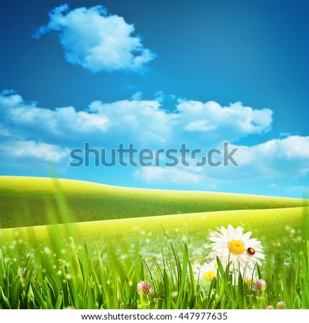Dreamy natural landscape with green hills under blue skies and couple of woods