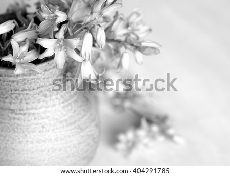 Dreamy Sepia Toned Closeup Aerial of Soft Bell Shaped Lilly Flowers Spilling out of a Stoneware Vase with Horizontal Wood Background with room or space for copy, text, your words to the side - stock photo