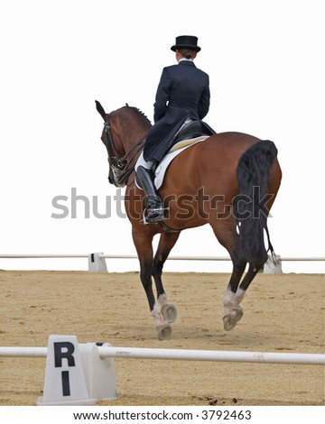 Dressage competitor with clipping path - stock photo