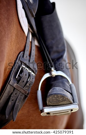 Dressage rider and horse closeup boot in stirrup detail photograph - stock photo