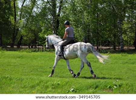 Dressage rider exercising