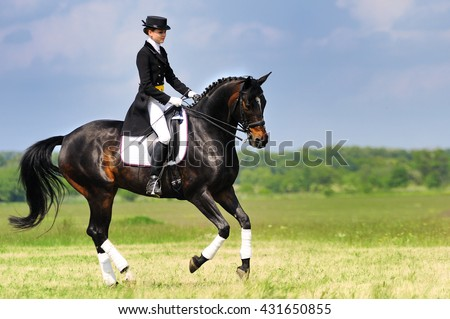 Dressage rider on bay horse galloping in field - stock photo