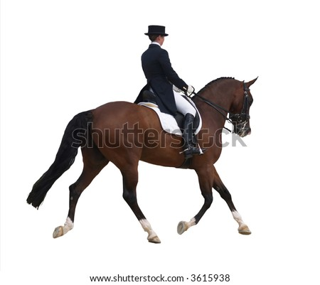 Dressage Test  (Clipping Path