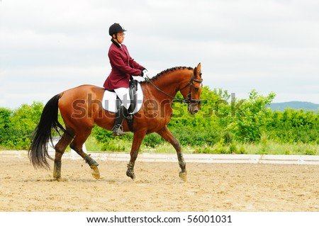 Dressage test for young horses - stock photo