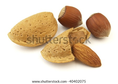 Dried almond and filbert - stock photo