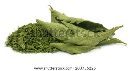 Dried and crushed Stevia leaves over white background - stock photo