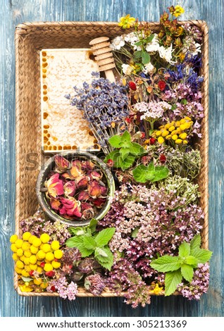 Dried and fresh herbs and flowers in basket. Herbal Medicine - stock photo