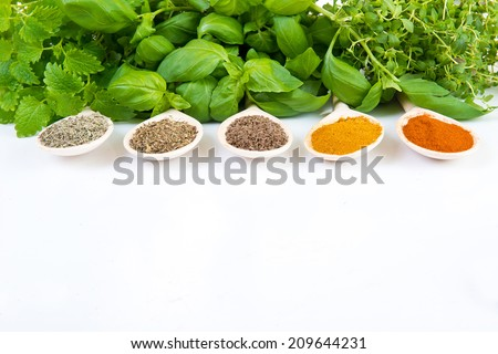 Dried and fresh spices  on white background - stock photo