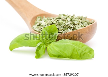 dried basil and twigs of fresh basil - stock photo