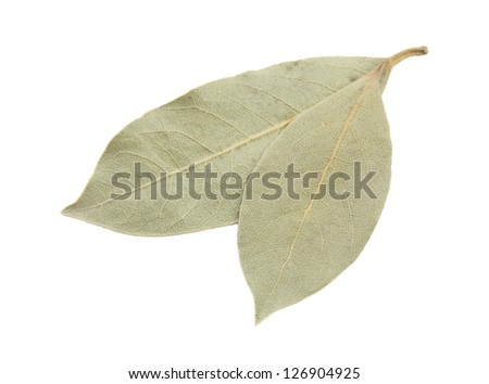 Dried bay leaves on white background