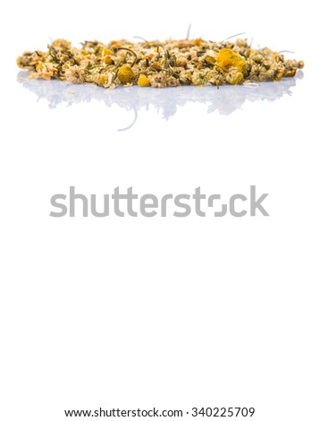 Dried chamomile herbal tea over white background