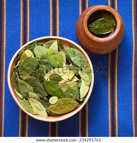 Dried coca leaves in clay bowl with fresh coca tea (mate de coca) on the side, photographed with natural light  - stock photo
