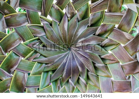 Dried coconut leaves woven background - stock photo