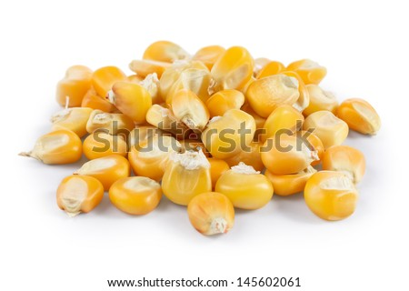 Dried corn kernels isolated on white - stock photo