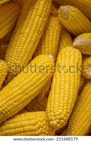 Dried Corns in a Sack