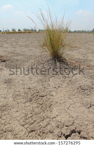 Dried cracked earth and global warming concept  - stock photo
