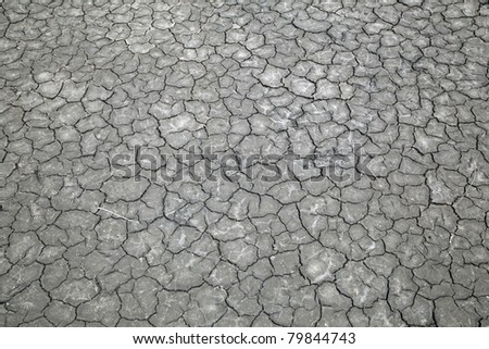 Dried,cracked soil