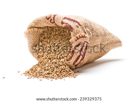 Dried cumin seeds in jute bag isolated on white background - stock photo