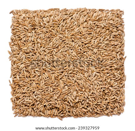 Dried cumin seeds isolated on white background
