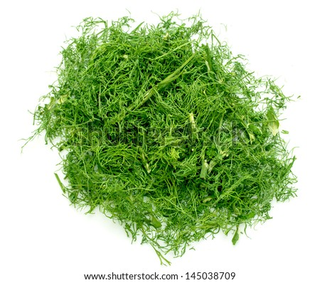 Alfalfa Sprouts Isolated On White Background 418471837 on Chopped Lettuce Green Clip Art