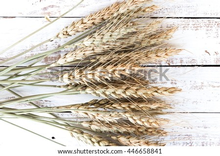 Dried ears of rye, white, wooden background, top view, flat layout.