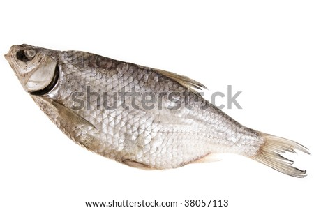 dried fish Isolated objects on a white background.
