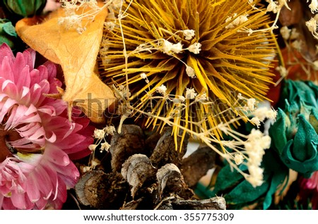 Dried flowers closeup on background - stock photo