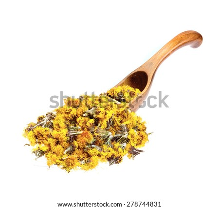 Dried flowers coltsfoot (Tussilago farfara) on the wooden spoon. - stock photo