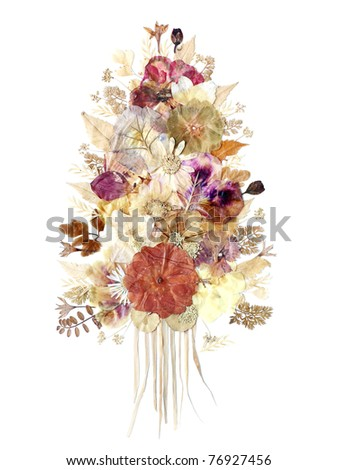 Dried flowers composition isolated - stock photo