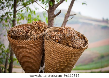 Dried flowers in a basket - stock photo