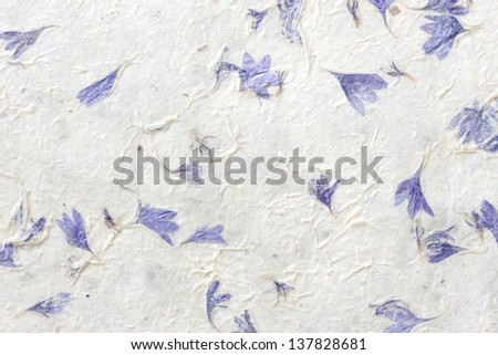dried flowers on gift wrap - stock photo