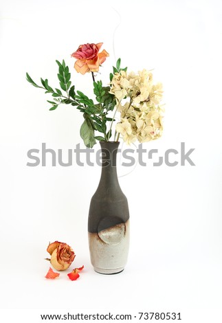 Dried green hortensia and rose in vase - stock photo