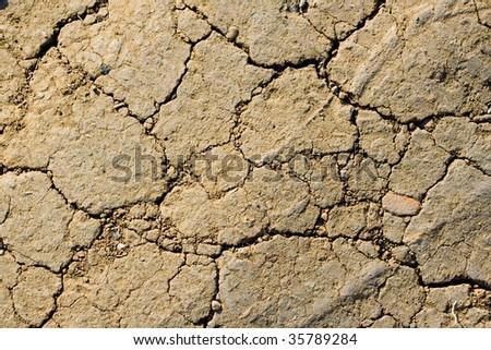 dried ground - stock photo