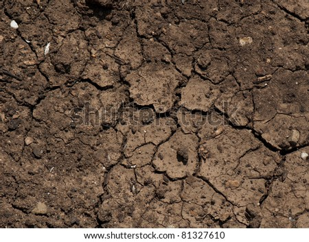 dried ground covered with cracks. background for design - stock photo