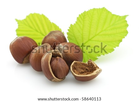 Dried hazelnuts with leaves